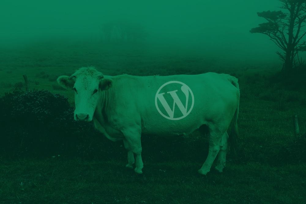Comunidad WP en Galicia