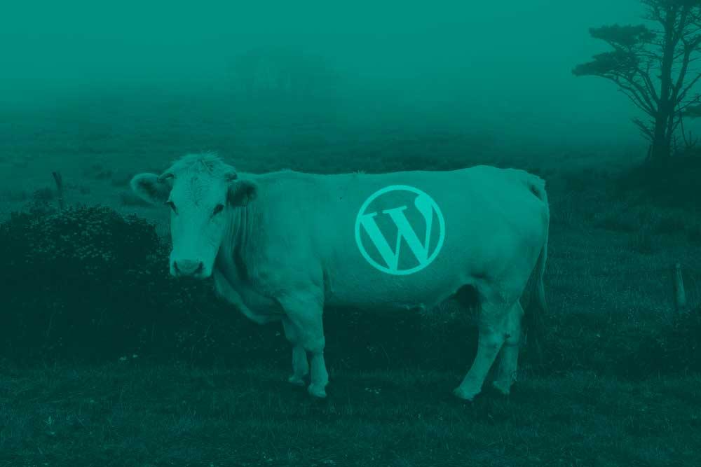 WordPress Galicia